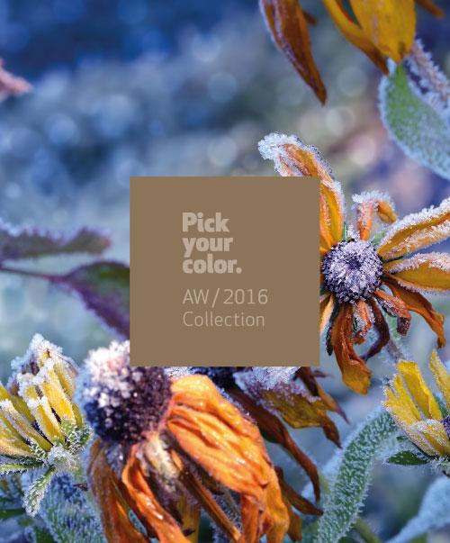 Lanzamiento colección Pick Your Color AW/2016